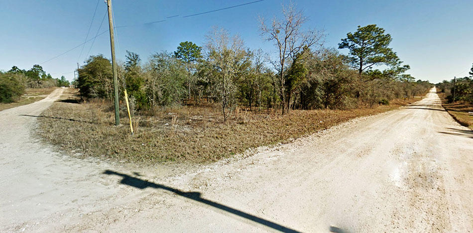 Nice treed lot on well maintained road - Image 4