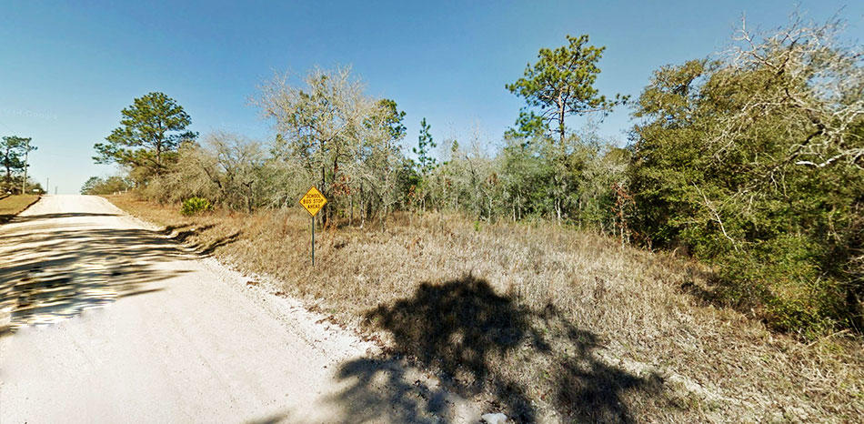 Nice treed lot on well maintained road - Image 5