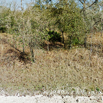 Nice treed lot on well maintained road - Image 1