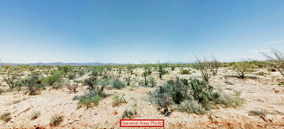 More Than 1 Acre of Gorgeous Desert Gem - Image 2