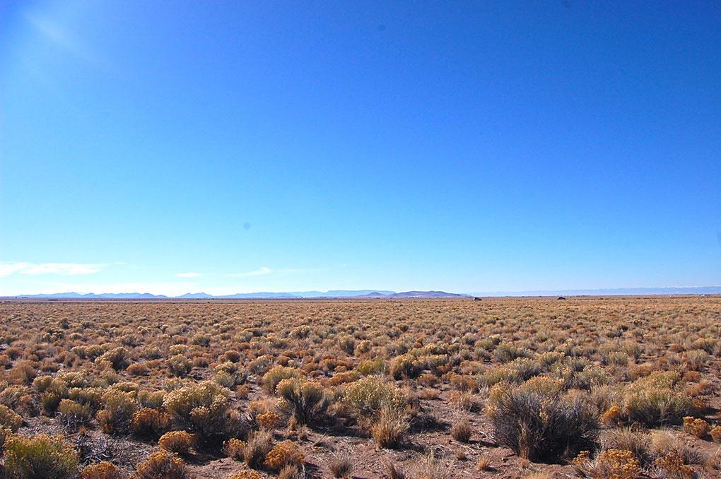 Spacious 4 Acres Beneath Majestic Mountain - Image 3