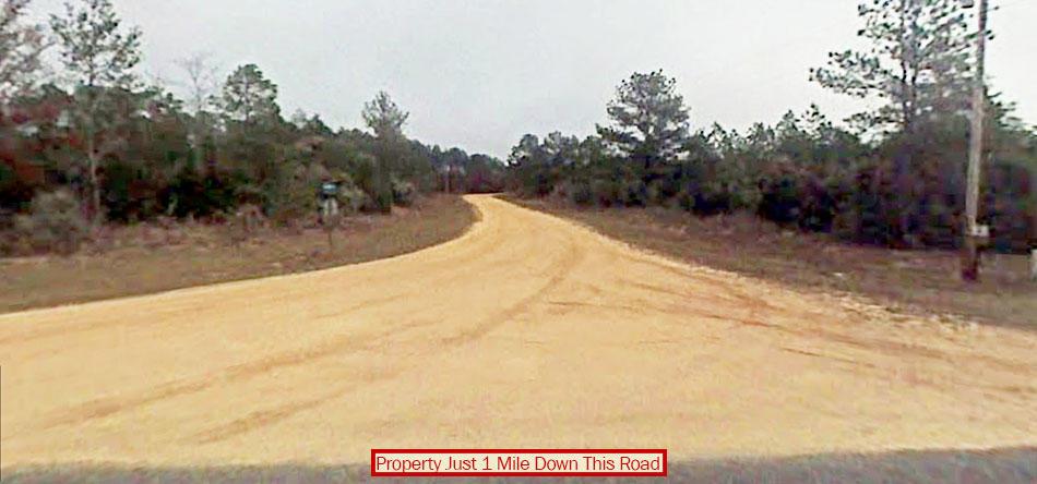 Beautiful 1 Acre Plot in Sunny Florida - Image 4