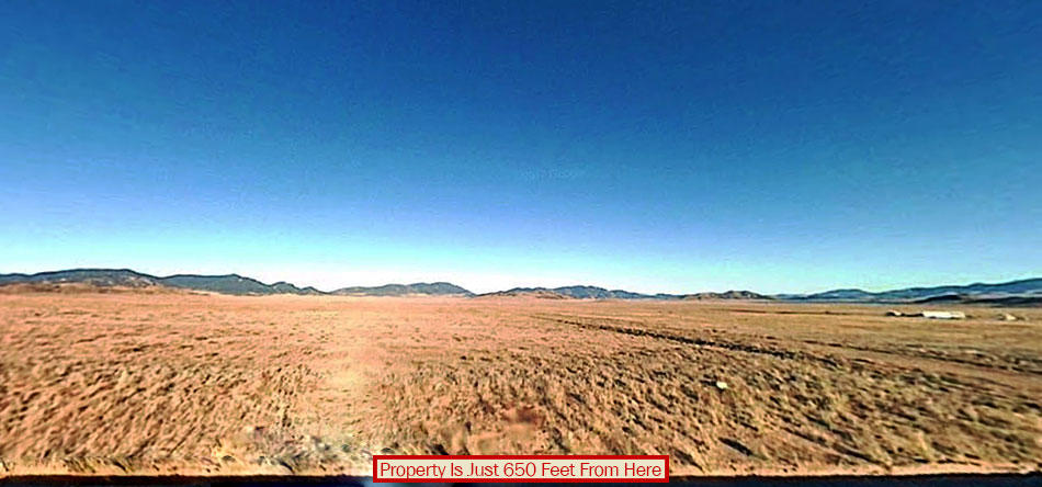 Stunning 5 Acres Near National Forest - Image 2