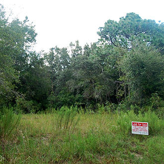 Large Lush Lot In Up and Coming Development - Image 0