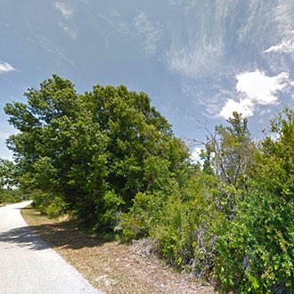 Two Acre Treed Escape Near Wesley Chapel - Image 0