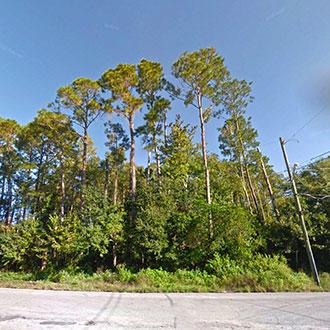 Large Acreage Land in Jacksonville - Image 0