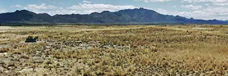 Over Quarter Acre of Private Southern Arizona Land