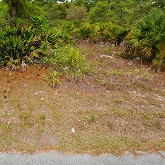Amazing Property Near Florida Coast - Image 0