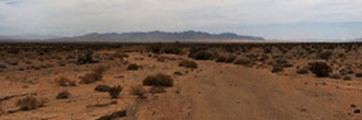 20 Acres of Gorgeous Desert Land