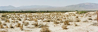 Breathtaking Views on 2 Acre Desert Land