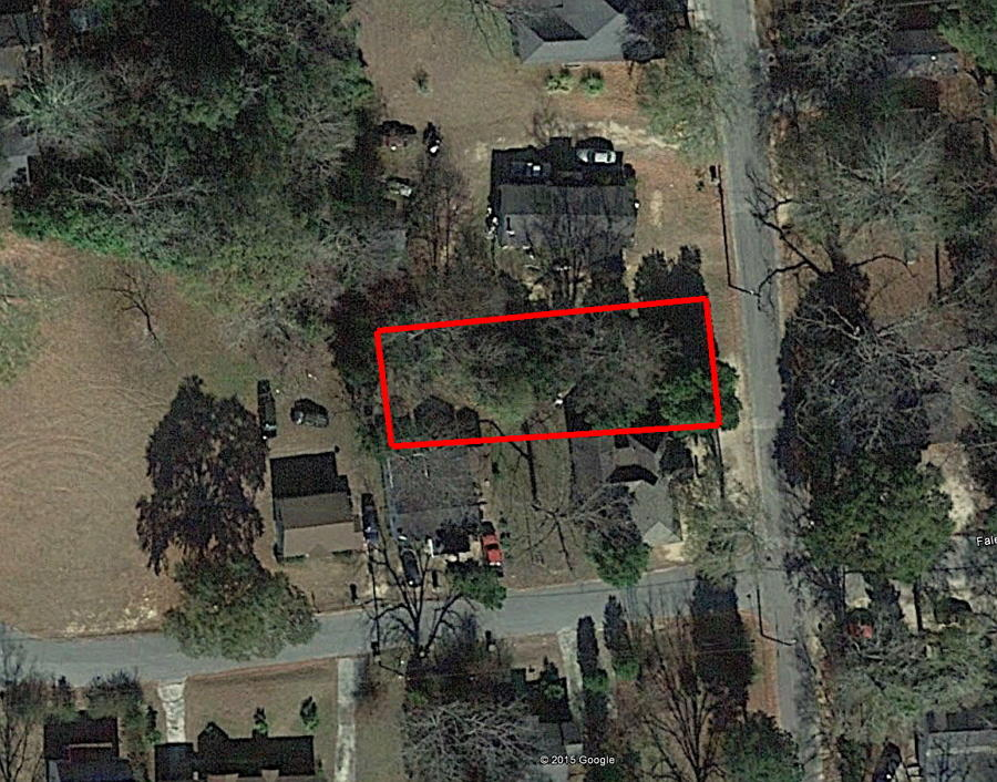 City lot with utilities in Hawkinsville - Image 1