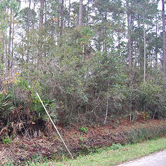 Nice Treed Property in East Palatka near St. Johns River - Image 1