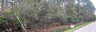 Nice Treed Property in East Palatka near St. Johns River