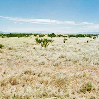 Flat 1+ Acre Grassland in Southern Arizona - Image 1