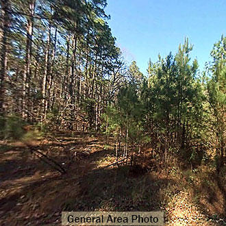 Wooded Louisiana Property Near Lake - Image 0