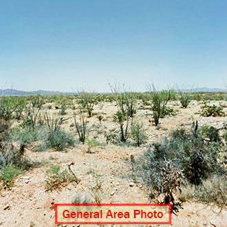 More Than 1 Acre of Gorgeous Desert Gem - Image 1