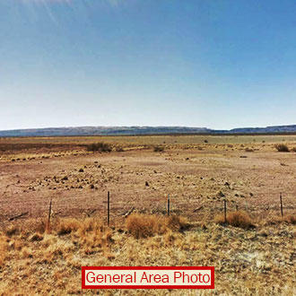 40 Acres of Land in the Hills 90 minutes from Valentine - Image 1