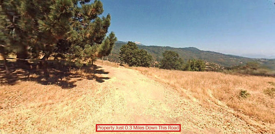 Spread Out and Enjoy this Large Acreage Near Badger California - Image 4