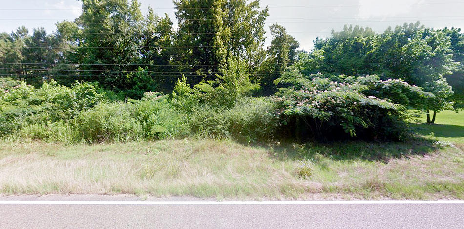 Beautiful 1 Acre of Unrestricted Louisiana Land - Image 2