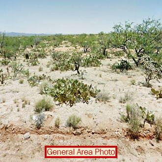 Prime Real Estate on 1 Acre Desert Land - Image 0