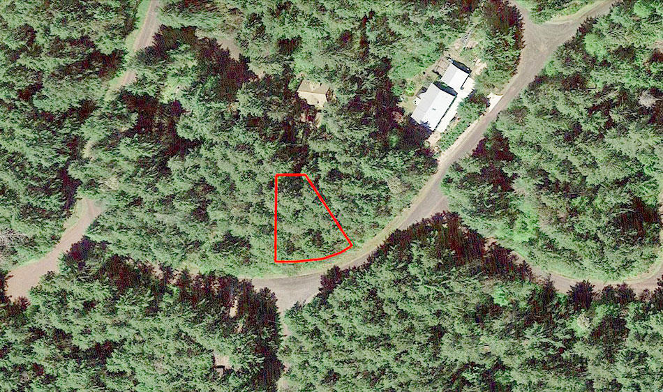 Nearly Quarter Acre Anderson Island Property - Image 1