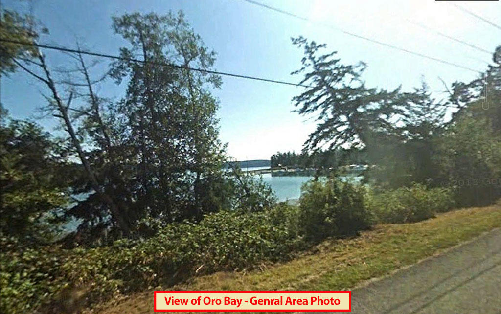 Nearly Quarter Acre Anderson Island Property - Image 2