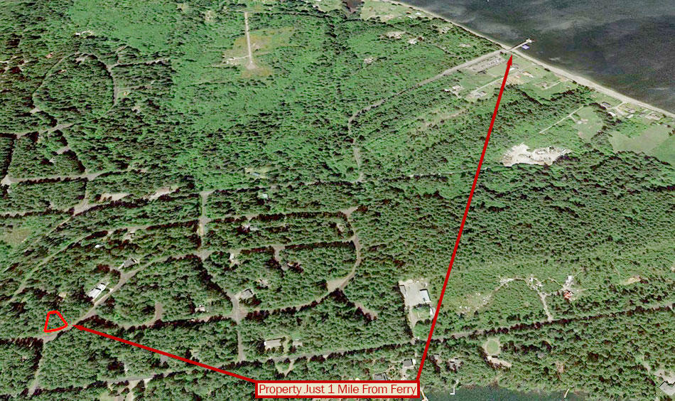 Nearly Quarter Acre Anderson Island Property - Image 4