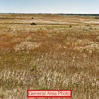 Flat Colorado Parcel With Water Hook-Up Available - Image 1