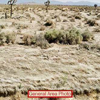 2 1/2 Wide-Open Acres 30 minutes from Lancaster and Palmdale - Image 1