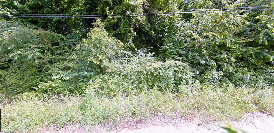 Large Acre Lot Near Meridian Mississippi - Image 4