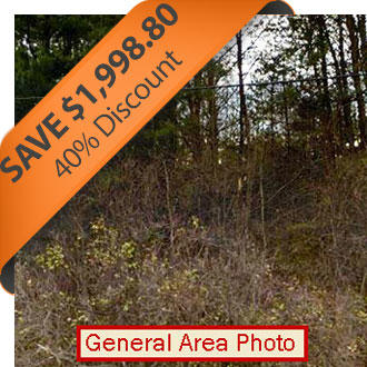 Half Acre town lot Near Ladysmith - Image 0