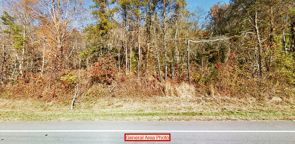 Three Acres of Treed Land Near Ohio River - Image 2