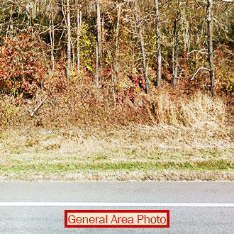 Three Acres of Treed Land Near Ohio River - Image 0