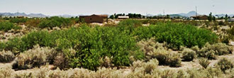 Corner Lot Near Tonopah Over an Acre in Size