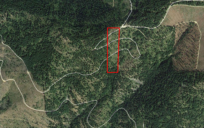 10 Acres in the Coeur d Alene  Idaho National Forest Area! - Image 1