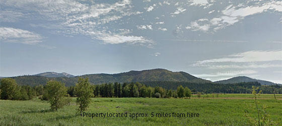 10 Acres in the Coeur d Alene  Idaho National Forest Area! - Image 2