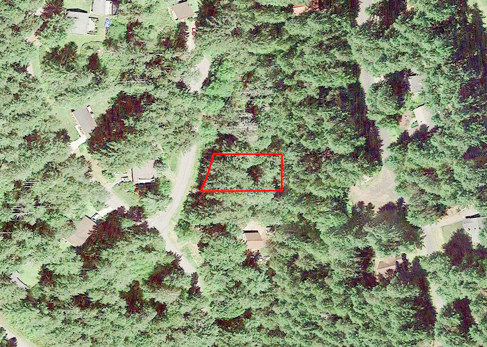 Beautiful Quarter Acre Plot on Anderson Island - Image 2