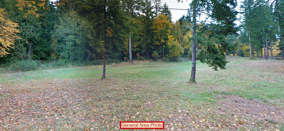 Beautiful Quarter Acre Plot on Anderson Island - Image 3
