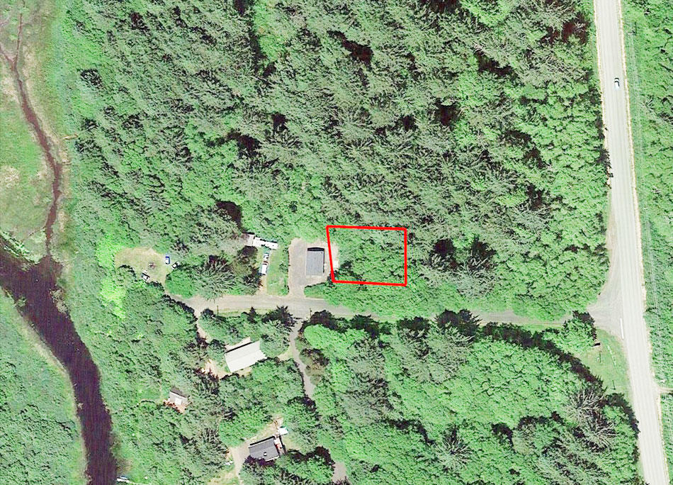 Nearly Beach Front Property in Famed Grays Harbor - Image 1