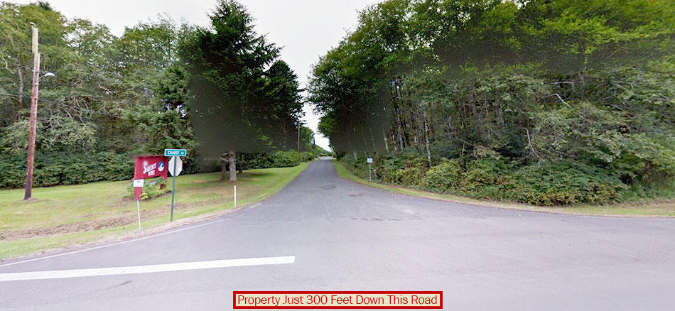 Nearly Beach Front Property in Famed Grays Harbor - Image 2