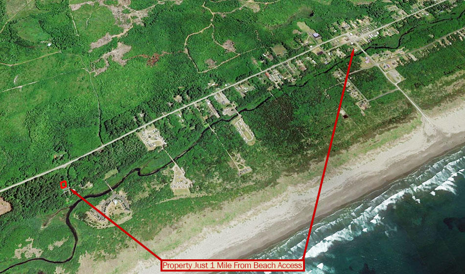 Nearly Beach Front Property in Famed Grays Harbor - Image 3