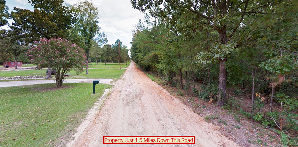 Unrestricted Acre Property in Eastern Texas - Image 4