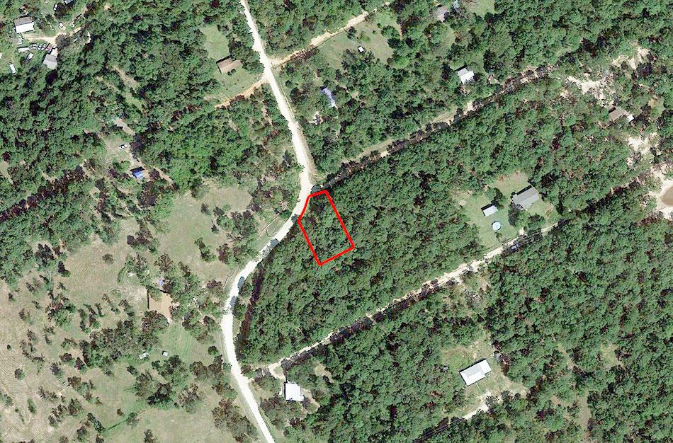 Heavily Treed Property Near Trinity - Image 1