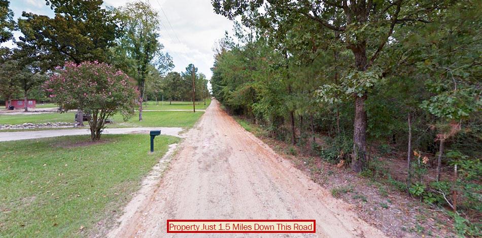 Heavily Treed Property Near Trinity - Image 3