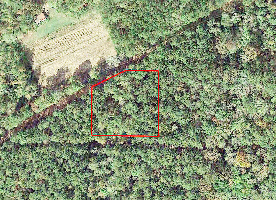 Nearly 1 Acre Near Coosa River - Image 1