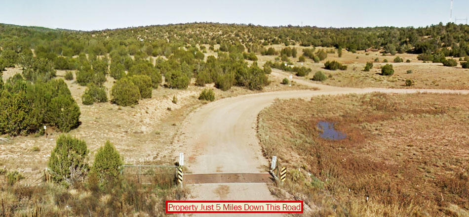 Over Two Acres near Seligman - Image 4