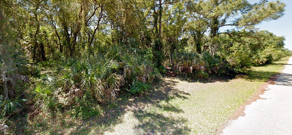 Neighborhood Lot in Port Charlotte - Image 5
