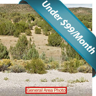 Over Two Acres near Seligman - Image 1