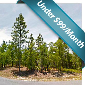 Excellent Small Residential Lot in Homosassa - Image 0