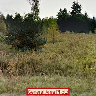 Washington State Island Getaway - Image 0